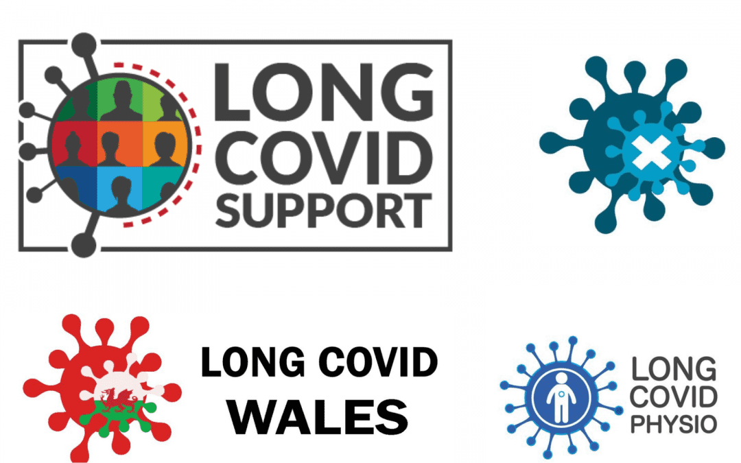 Long COVID: Patient Experience and Support Groups